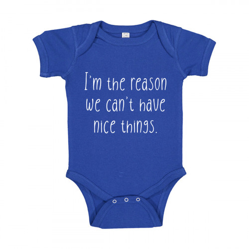 I'm The Reason We Can't Have Nice Things Onesie